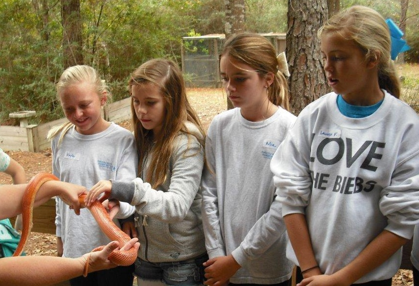 reptile lesson with dill photo.jpg